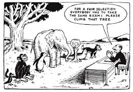 standardised testing